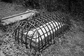 Grave Cage